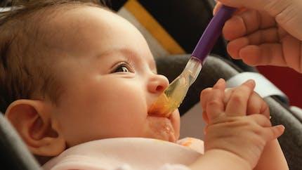 Bébé : le Top des aliments pour débuter la diversification alimentaire