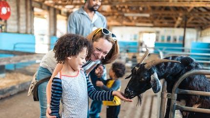 Témoignages : les vacances à la ferme, c'est tendance !