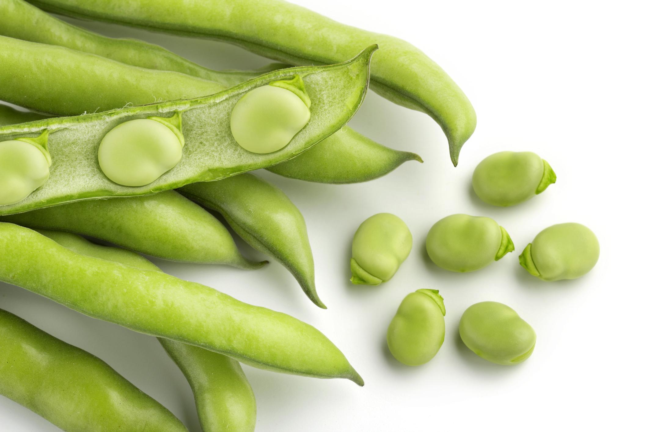 Les fèves : les atouts nutritionnels pour toute la famille