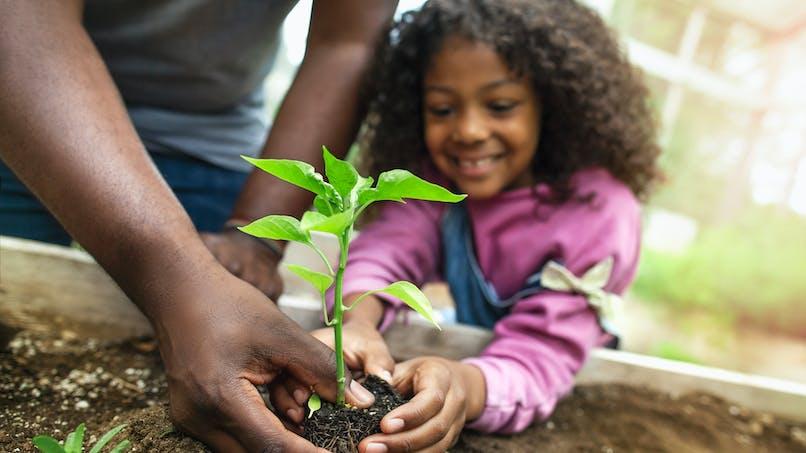 petite fille plante un arbre dans la terre