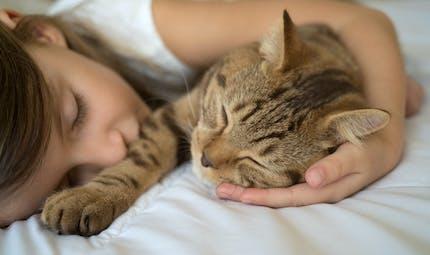 Enfants : dormir avec un animal de compagnie a-t-il un impact sur leur sommeil ?