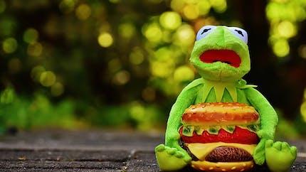 Mauvaise alimentation: quelles sont les conséquences de notre nourriture d'enfant sur notre santé d'adulte?