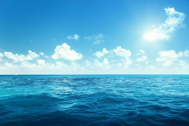 Après le naufrage de leur bateau, une mère se sacrifie pour sauver ses enfants