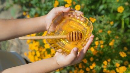 Pourquoi le miel est dangereux pour les bébés